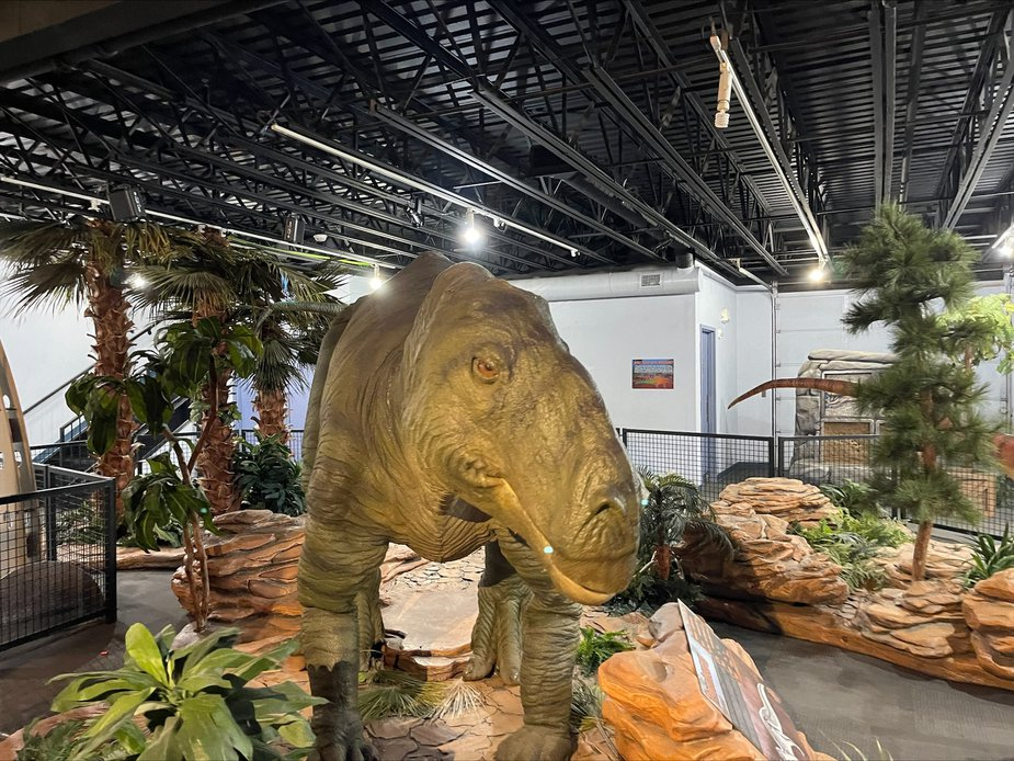 Plant-eating tenontosaurus is still plenty intimidating. Photo by Nathan Gunter