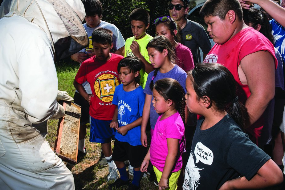 Children in the Yuchi after-school and summer language programs often take field trips. In 2016, they visited a local beekeeper.