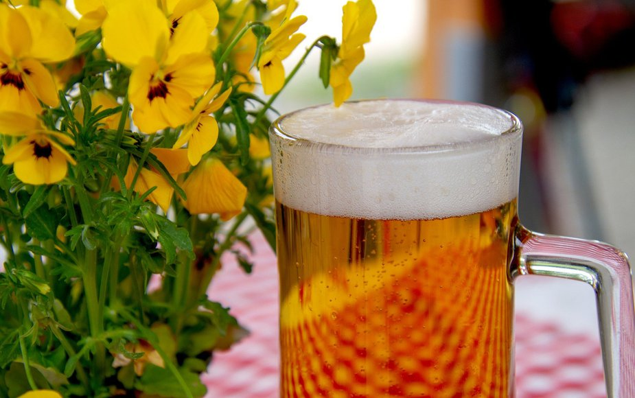 Grab your steins and taste the delicious German goodness in Fort Sill this week.